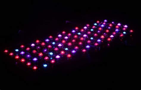 led lights and plant growth 10 diy led grow lights for growing plants indoors home