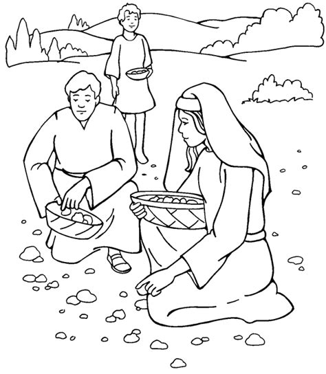 moses quail coloring page google images