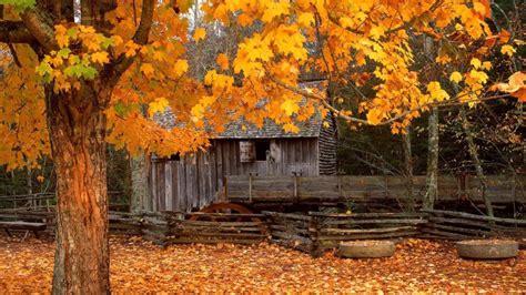 beautiful cabin desktop background high definition
