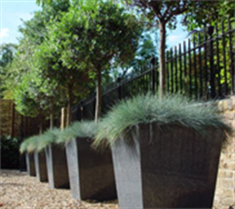 Large Wooden Planters For Trees by Large Tree Planters Planters For Trees