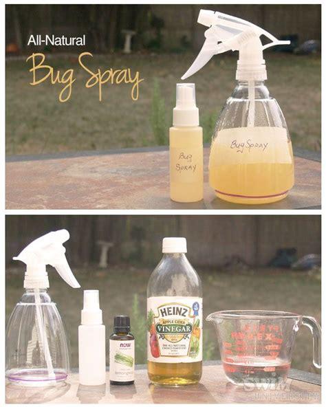 bugs  butterflies images  pinterest gardening home remedies  remedies