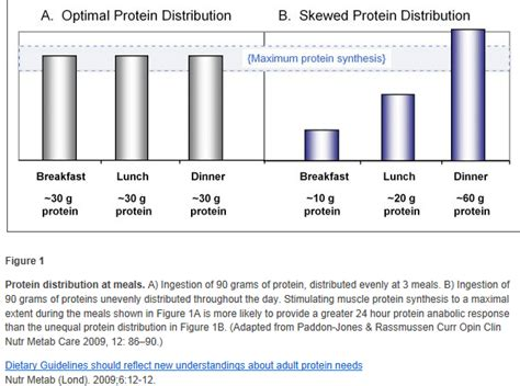 protein requirements for daily protein requirement