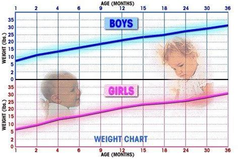 Paroxetine Detox One Week by Infant Weight Chart What Is Normal Infant Monthly Weight