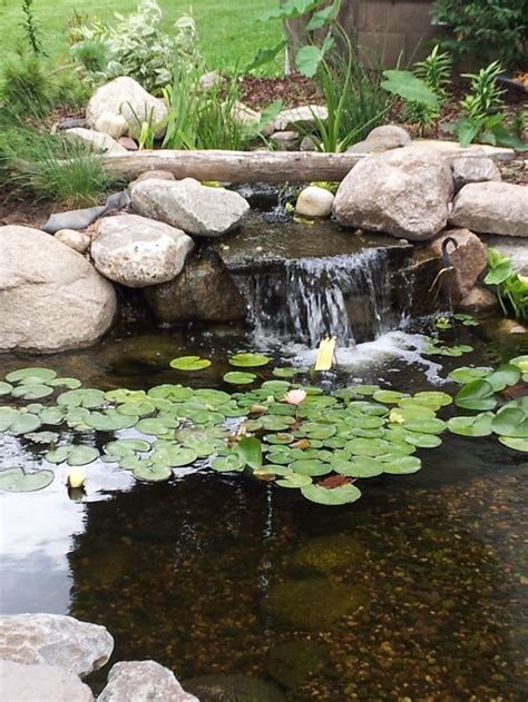 minnesota small backyard pond with a waterfall and a bog to help keep it clean inspired
