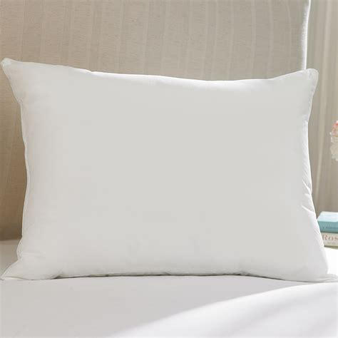 Wash Pillow by Allerease King Water Wash Pillow