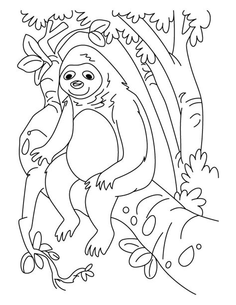 1 sloth coloring book best sloth coloring book for adults animals coloring book about sloths volume 1 books sloth looking like gorilla coloring pages free