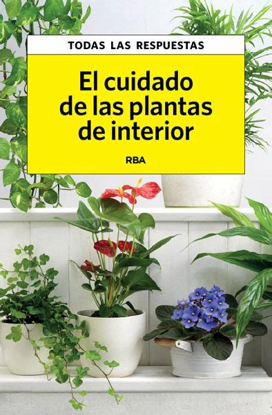 cuidado plantas interior the world s catalog of ideas