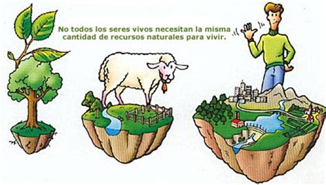 imagenes de recursos naturales vivos 191 solo geograf 205 a la huella ecol 211 gica