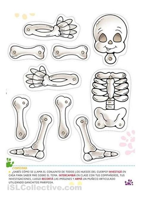 skeleton template the world s catalog of ideas