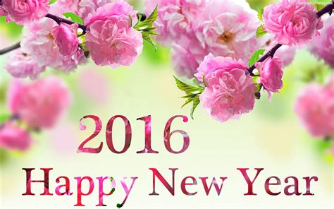 flower hd images with happy new year happy new year 2016 wallpapers best wallpapers