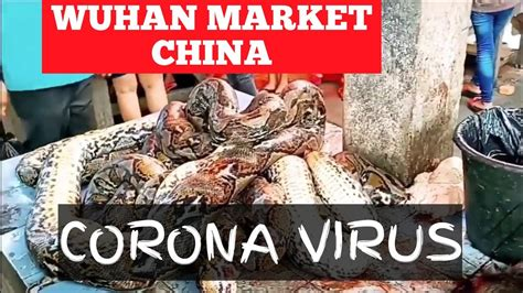 wuhan market china corona virus origin youtube