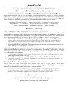 Resume Seo Example Seo Manager Resume Sample