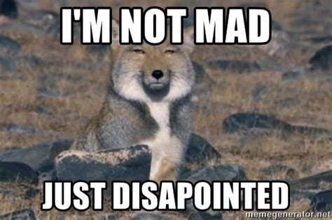 i m not mad just disapointed tibetan sand fox meme