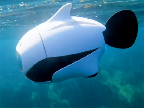 Drone Underwater this underwater drone has a 4k and swims like a fish business insider