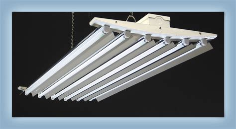 6 Bulb T5 Light Fixture Welcome To Lightwings Lighting