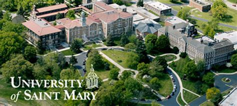 Umuc One Year Mba Program by 15 Most Affordable Master S Mba In Marketing 2018