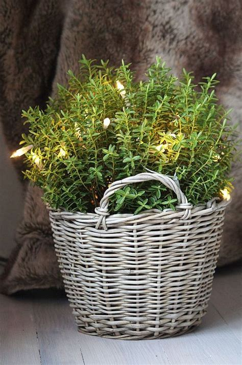 Wicker Basket Planters by 15 Rattan Accessories Rich In Charm And Always