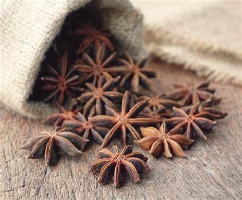 anice stellato in cucina l anice stellato tutte le propriet 224 benefiche e usi in