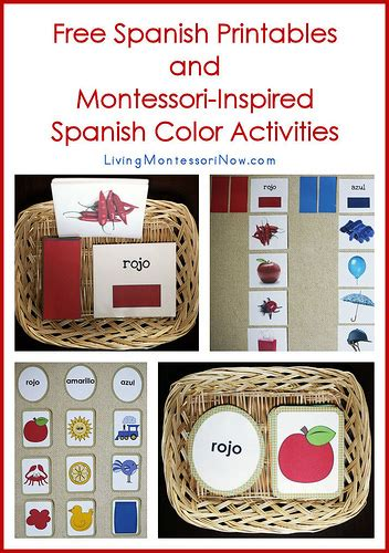 printable montessori activities www prekandksharing blogspot com