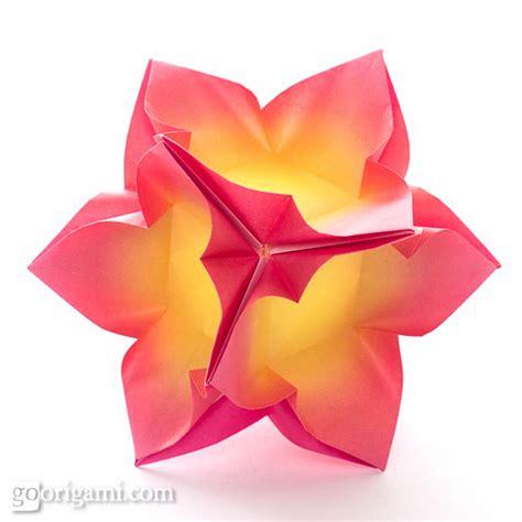 Modular Flower Origami - go origami kusudama modular origami