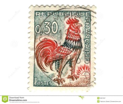 french stamp  chicken royalty  stock
