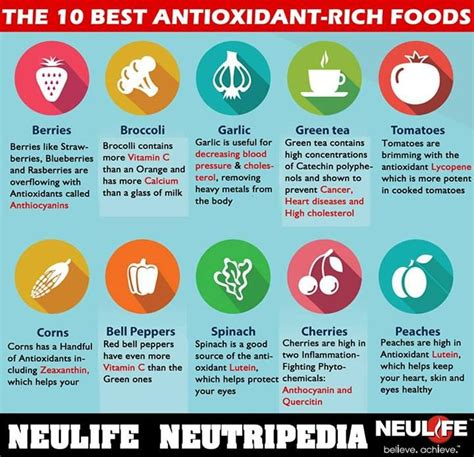 10 Best Antioxidant Foods by Antioxidants Neutralize Harmful Free Radicals Generated In