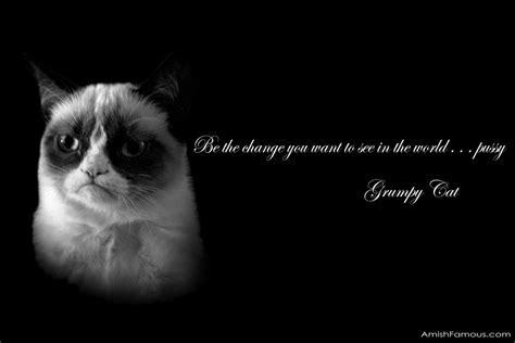 cat wallpaper with quotes grumpy cat meme wallpaper wallpapersafari