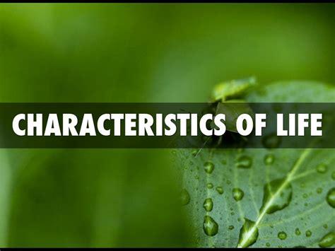 characteristics of biography characteristics of life by danny mcnabb
