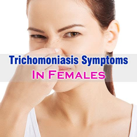 common trichomoniasis symptoms in females and treatment
