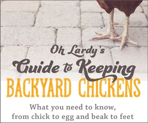 chickens for backyards coupon code backyard chickens