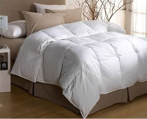 down comforter for dogs tremont 300 thread count down comforter white full