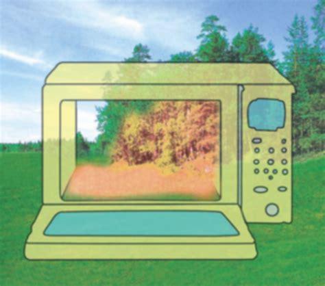 come cucinare col microonde microonde cottura contronatura terra nuova