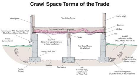 palmetto exterminators construction methods and termites