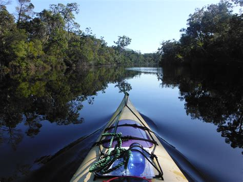 everglades boats australia kayaking adventure in the noosa everglades queensland