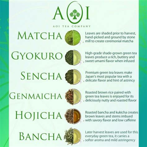Different Types Of Detox Tea by 25 Best Ideas About Advantages Of Green Tea On