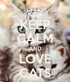 keep calm and cats poster karolina keep calm o matic