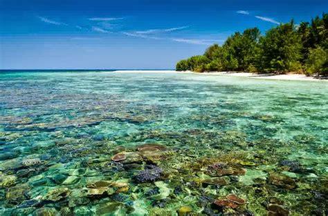 taman nasional kepulauan karimunjawa pulau cemara besar