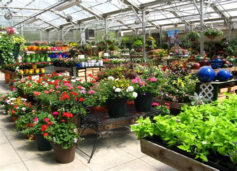 Garden Center Nc Homewood Nursery Garden Center Raleigh Nc 27614 919