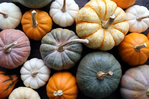 what color are pumpkins decorate for your outdoor fall in six simple