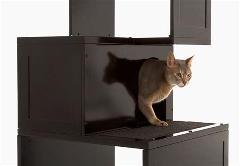 stylish cat furniture back to modern pet furniture accessories for design lovers