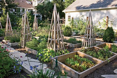 How To Plant A Garden In Your Backyard by How To Plant A Vegetable Garden In Your Backyard Chicago