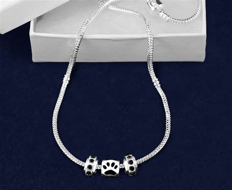 Pandora Like Paw Print Necklace ? BC Chihuahua Rescue
