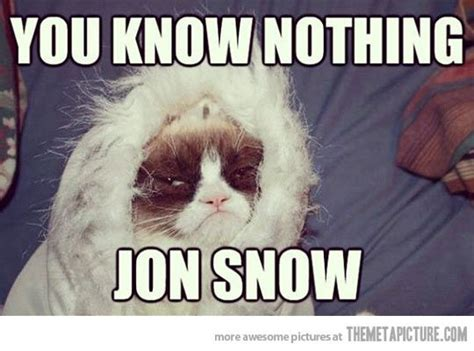 Grumpy Cat Snow Meme - grumpy game of thrones game of snow and pictures