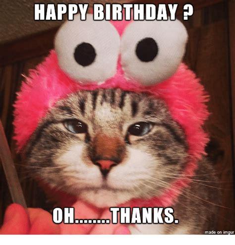 Birthday Cat Memes - best happy birthday cat meme