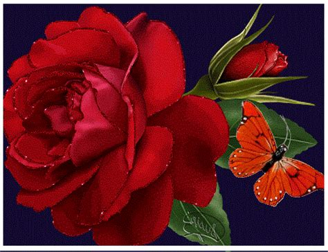 imagenes con movimiento de rosas rojas fotos de rosas rojas animadas y con movimiento imagen de