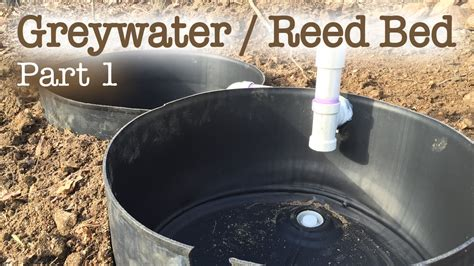 greywater reed bed filtration system part  youtube