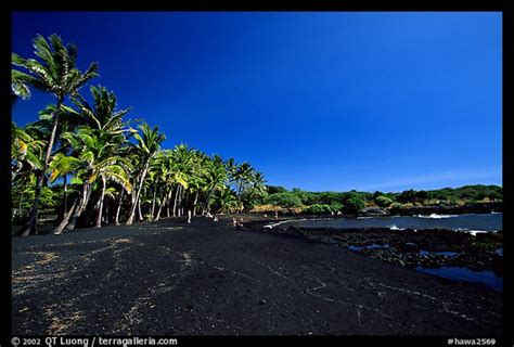 black sand beach big island picture photo black sand beach at punaluu big island