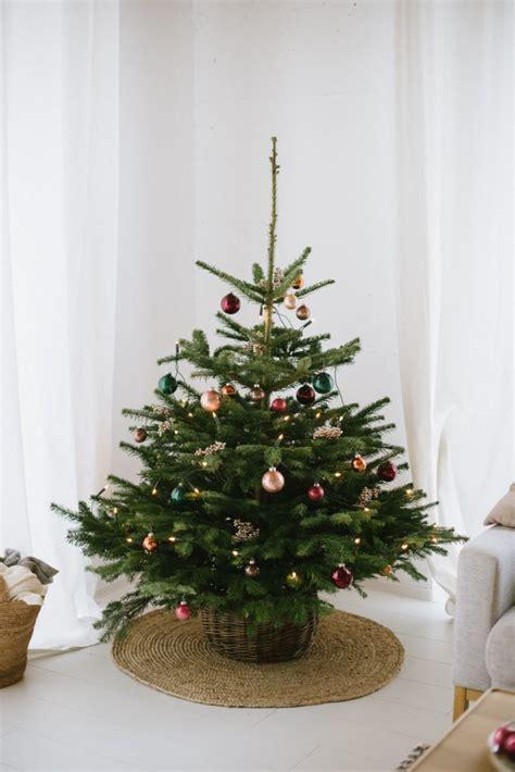 weihnachtsbaum mit ballen kaufen weihnachtsbaum blume2000 de und ein 30 gutschein f 252 r euch fr 228 ulein k sagt ja