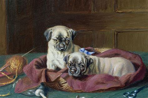 the history of pugs the 14 proudest pugs in the history of