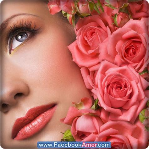imagenes para perfil flores flores de rosas bonitas de amor para perfil de facebook